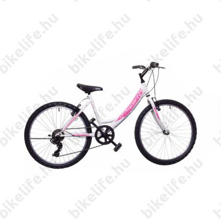 """Neuzer Bobby 24""""-os gyerek kerékpár, fiú, 18 seb. Shimano váltó, fekete/zöld-kék matrica"""