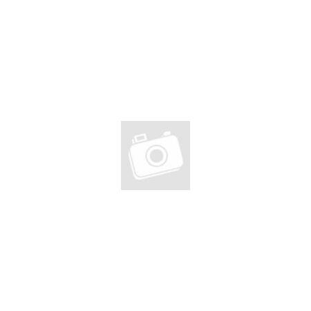 """KTM Chicago 29""""-os MTB kerékpár 2x9 Shimano Altus váltó, hidraulikus tárcsafék, fekete(szürke/kék) 21"""""""